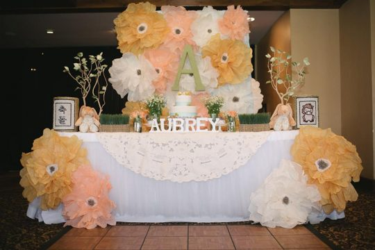 """Aubrey's """"Guess How Much I Love You"""" First Birthday"""