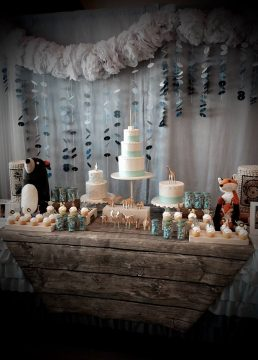 Jio's Noah's Ark Themed First Birthday Party