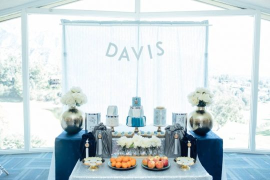 Davis' Blue Theme First Birthday