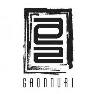 Gaonnuri
